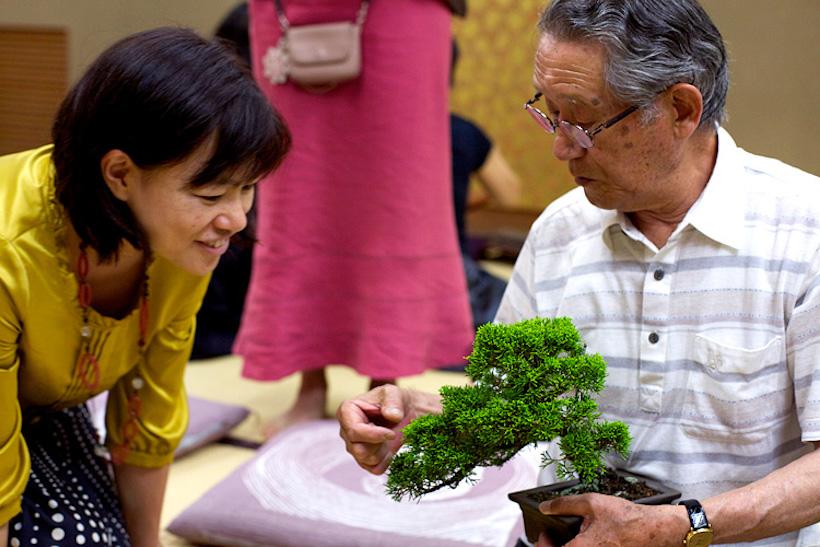 くのや和塾 第二十三回:盆栽−鉢の中の小宇宙−