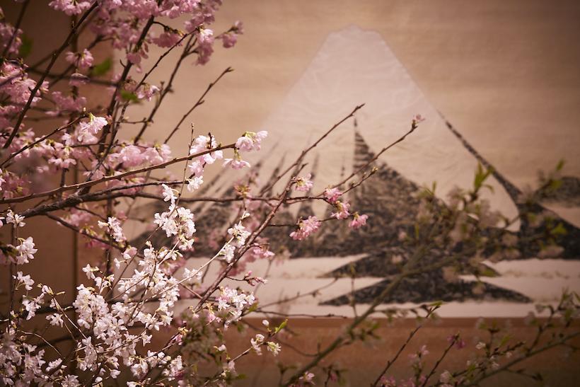 日本一贅沢な花見の宴「新喜楽観桜会」開催しました