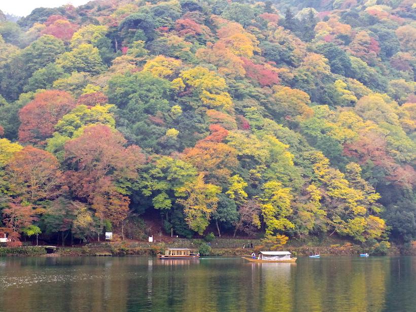 【和塾の船遊び】嵐山紅葉狩りと京都吉兆の美食